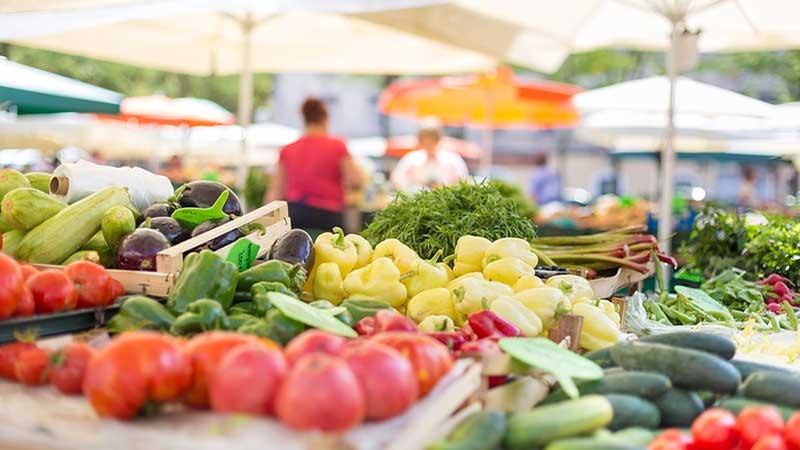Starta egen grönsaksodling - att sälja som grönsaksodlare