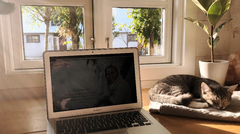 Foto på kattungen och livsnjutaren Tusse, av Cassandra Erika